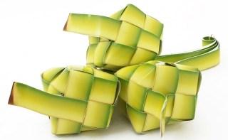 Ketupat (ahlussunnahsukabumi.com)