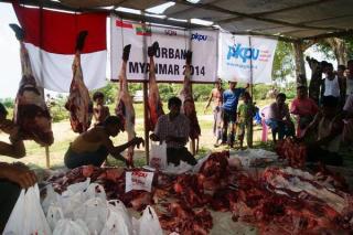 Proses pemotongan daging kurban di wilayah Meikhtilla, Myanmar.  (Wildan/Deni/pkpu)