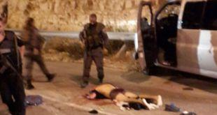 Operasi perlawanan dengan cara menabrakan kendaraan dan penusukan ke arah penjajah Israel menjadi cara ampuh yang mencemaskan Zionis Israel. (felesteen.ps)