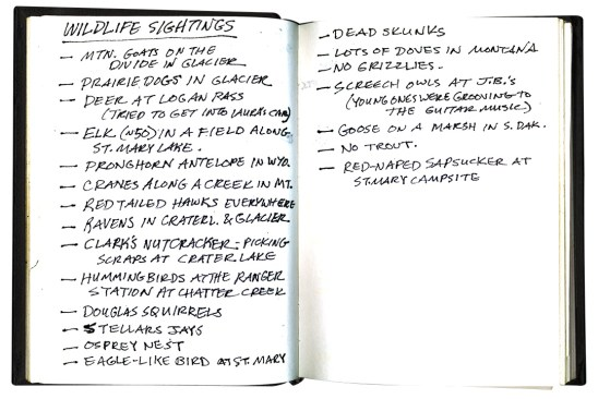 Pete's accounting of our collective wildlife sightings