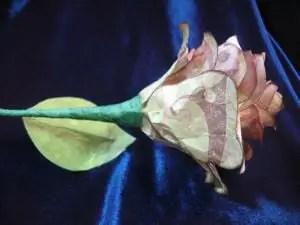 rosadepapel9