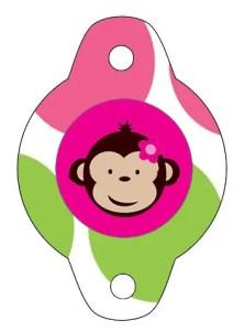 monkey24