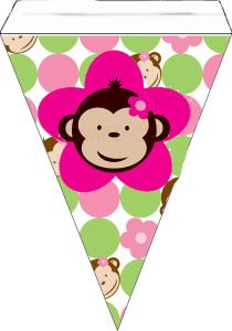 monkey26