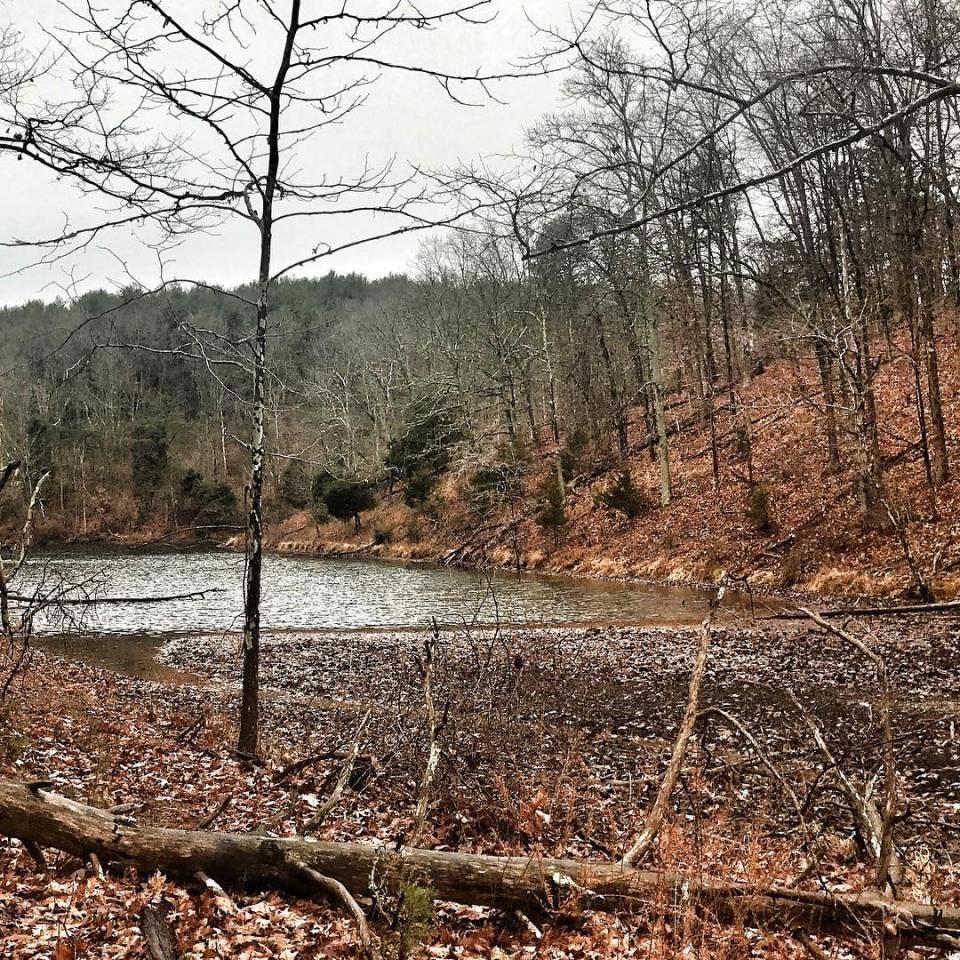 Along the lakeside