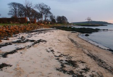 Dalgety Bay Beach by Harbour view