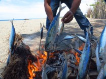 Fish cook on the beach in the district of Suai in southern Timor-Leste.