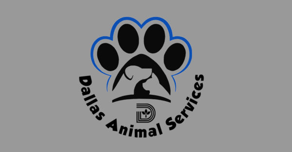City names new Director of Dallas Animal Services