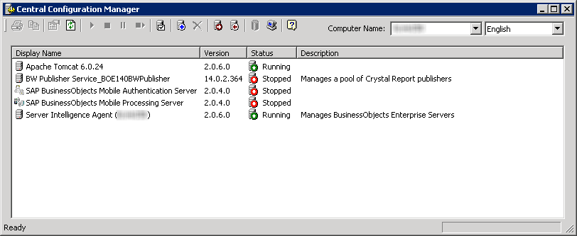 Central Configuration Manager XI 3.1