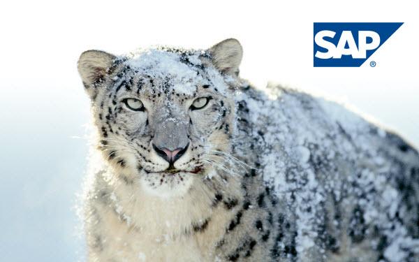 SAP Snow Leopard