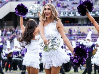 Dallas Sports Fanatic (10 of 28)