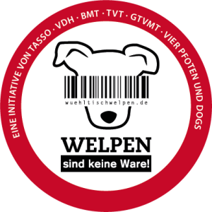 wuehltischwelpen-2