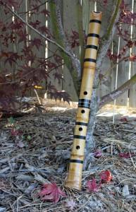 Eine Shakuhachi mit einem typ. Wurzelende (Foto: Judy Merrill-Smith_CCBYNCND)