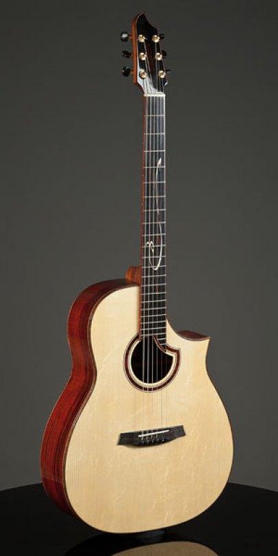 Modell AG; Fa. Stevens Custom Guitars; guitars.de