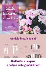 Esküvők számokban 2016-ban – INFOGRAFIKA