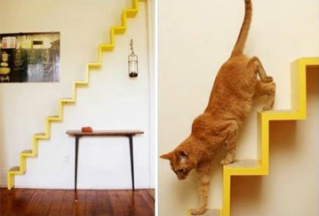7 scala-gatto