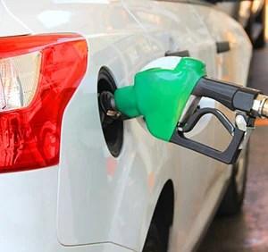 Do Ozone Generators Work to Remove Odors? The Elimination List!