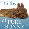15-lbs-of-bunny-icon.jpg