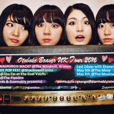 Interview with Otoboke Beaver