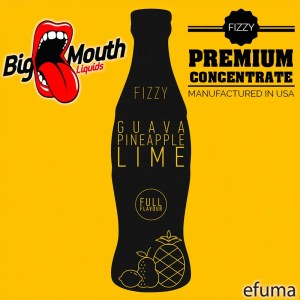 Fizzy - GUAVA | PINEAPPLE | LIME - 10ml