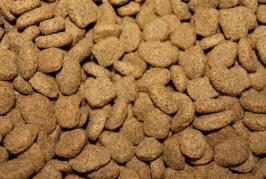 Mravenci mají rádi granule