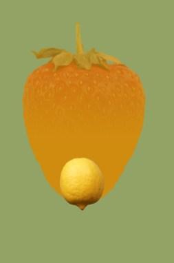 OrangeneErdbeerMitZitrone