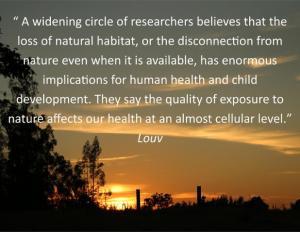 nature quotes8