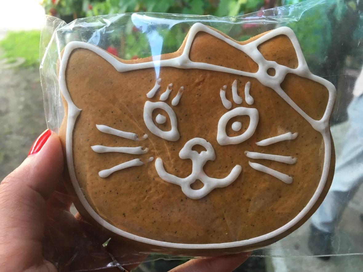 turta dulce targu secuiesc pisica