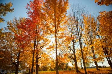 Fall Foliage trip to New Hampshire 2011
