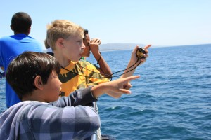 Wood Canyon Elementary School students try to spot gray whales. Photo: Brian Park