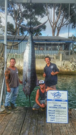 L to R: Dana Wharf Capt. Chris Pica, Dan Johnson and Jonathon Cooper pose with the Reel Fun's first-ever blue marlin. Photo: Courtesy Dana Wharf Sportfishing