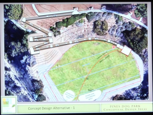A concept for a dog park in Pines Park was unveiled on Wednesday, Jan. 11. Photo: Kristina Pritchett