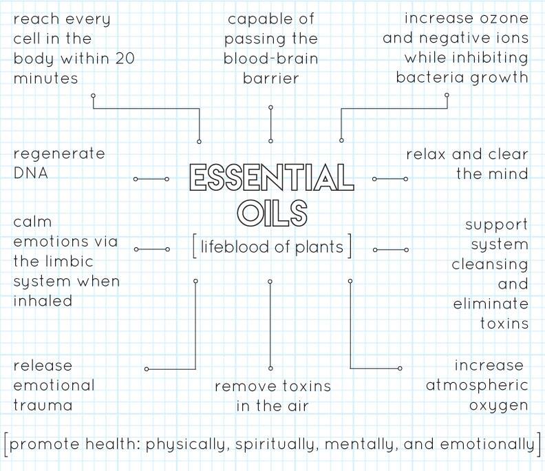 My Lifestyle Journey With Young Living Essential Oils, YL, Body, Health, Wellness, Plants, Lifestyle, Young Living Essential Oils