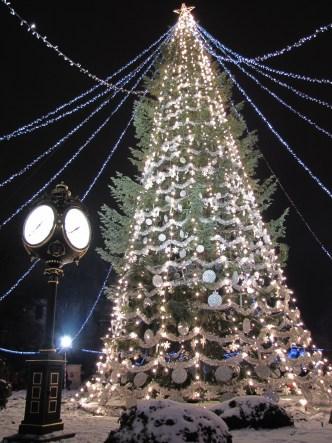 christmas-tree-1412586