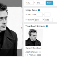 Editable WordPress Post Thumbnails in a Layout