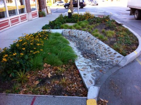 One of the Rain Gardens designed to handle runoff from the streets