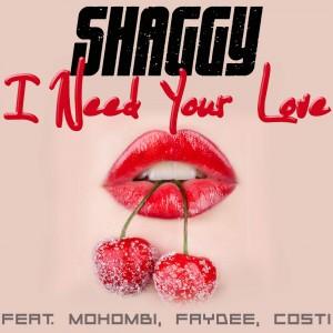 Shaggy I Need Your Love