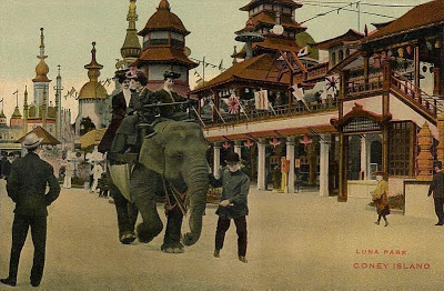 An elephant being ridden in Luna Park, Coney Island (1906). Before she was killed, this is the kind of thing Topsy would have been doing