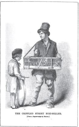 the crippled street bird-seller