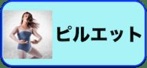 「ピルエット」の投稿を一覧表示するボタン