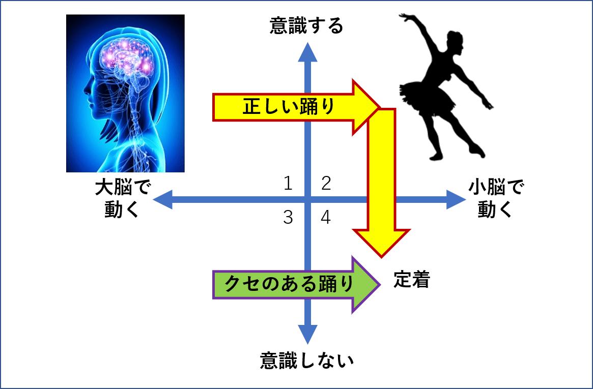 バレエにおける上半身の形と使い方17のチェックポイント