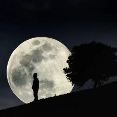 Moon Journey