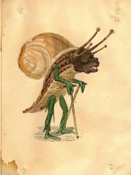 mg_snail