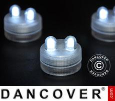 LED Floralytes (20 pcs) Ø 3 cm,White