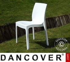Chair, Ice, Glossy white, 18 pcs.
