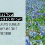 What You Need to Know_ Difference Between Alimony and Child Support in NJ