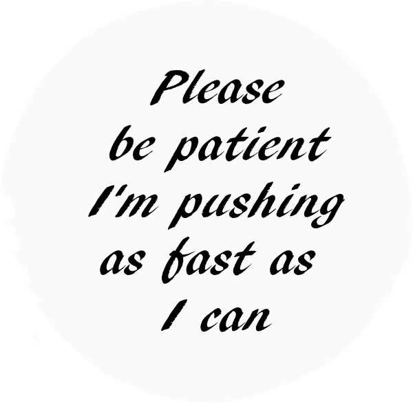 "Tire Cover/Window Decal ""Please be patient I'm pushing as fast as I can"""