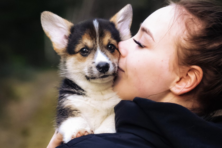Expert tips from pet parents on what you need and what you need to know before adopting a new puppy, including timing and essential supplies