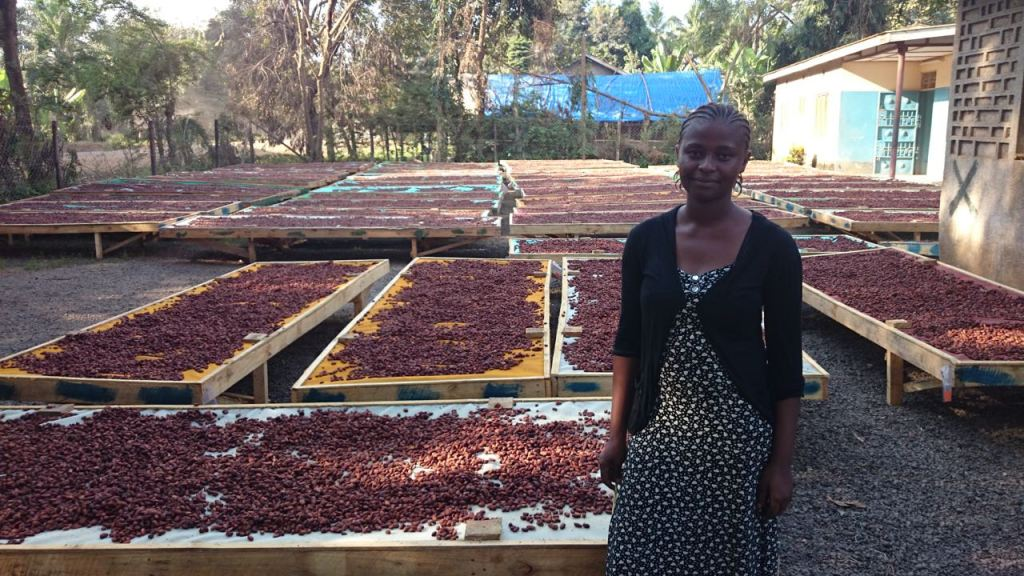 Matrida Christopher, Kokoa Kamili's quality supervisor, oversees fermentation and monitors the drying process. She makes sure that beans are raked three times a day and checks the moisture content frequently.