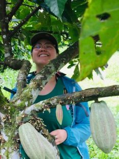 Renee in a cocoa tree Belize