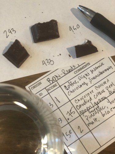 Taking notes while tasting chocolate